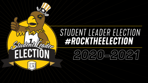 #rocktheelection
